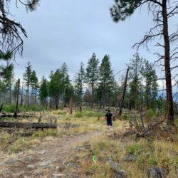 MEC Kelowna Okanagan Trail Race TWO – Myra Bellevue August 2019 Race Recap